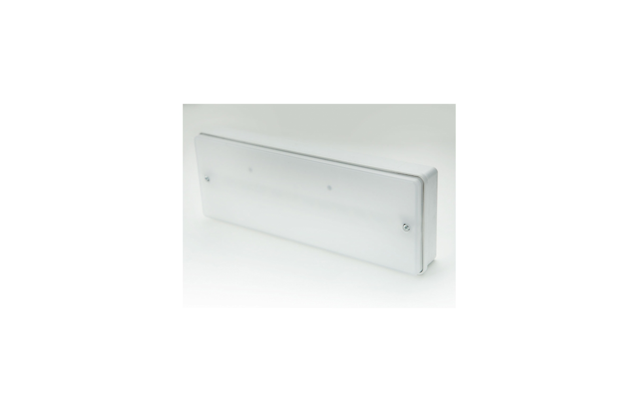 Armadura de emergência saliente LED IP65 110lm NP/P